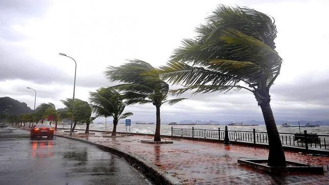 إلى غاية الإثنين القادم.. أمطار رعدية ورياح قوية في هذه المناطق