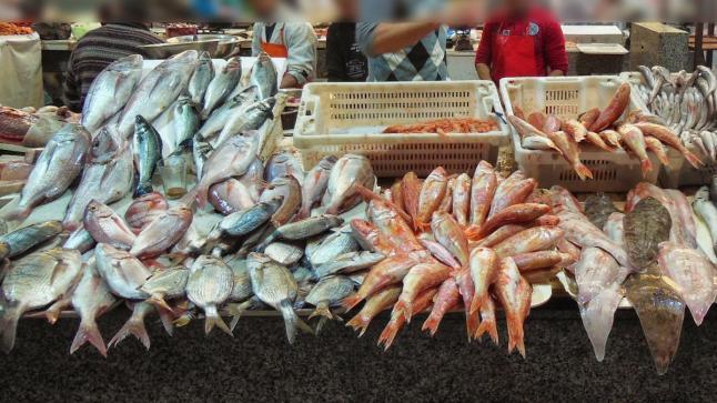 تفاصيل أكثر حول إغلاق سوق السمك وحالته قبل إصابة 50 مهني