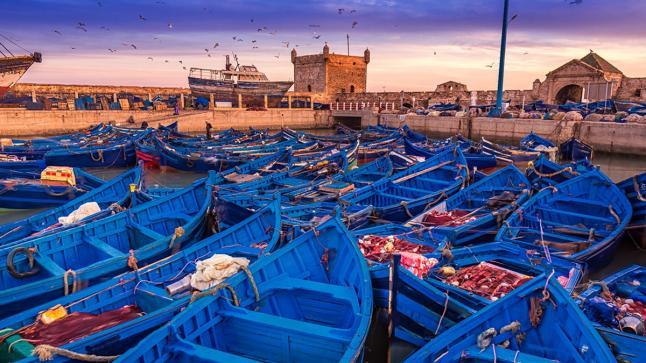 ميناء الصويرة يستأنف نشاطه من جديد